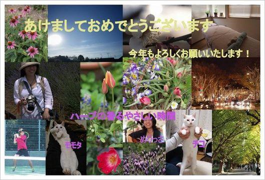 2014-01ブログ用年賀状1.jpg